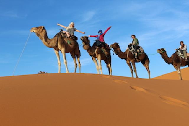 モロッコ、サハラ砂漠のらくだツアー