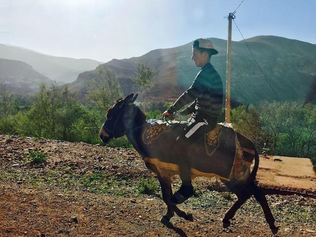 モロッコ、ロバに乗る少年