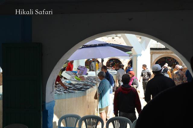 モロッコ、エッサウィラの魚市場