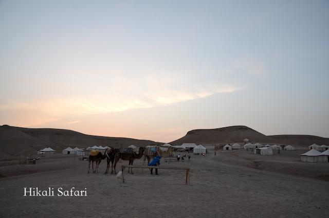 モロッコ、マラケシュ近郊のアガファイ砂漠