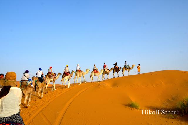 モロッコ、サハラ砂漠のキャラバン