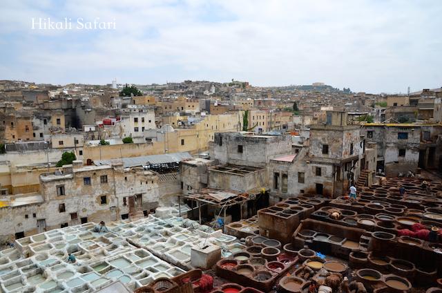 モロッコ、フェズのタンネリー