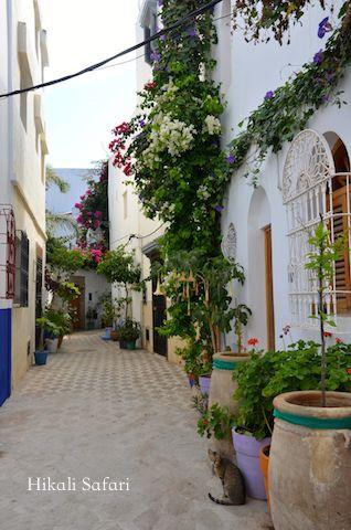 モロッコ、アシラーの路地