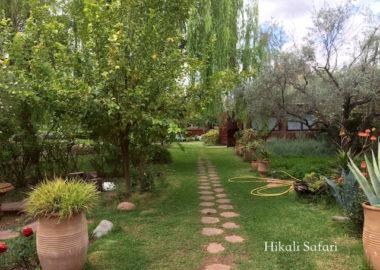 モロッコ、ウリカのハーブ園