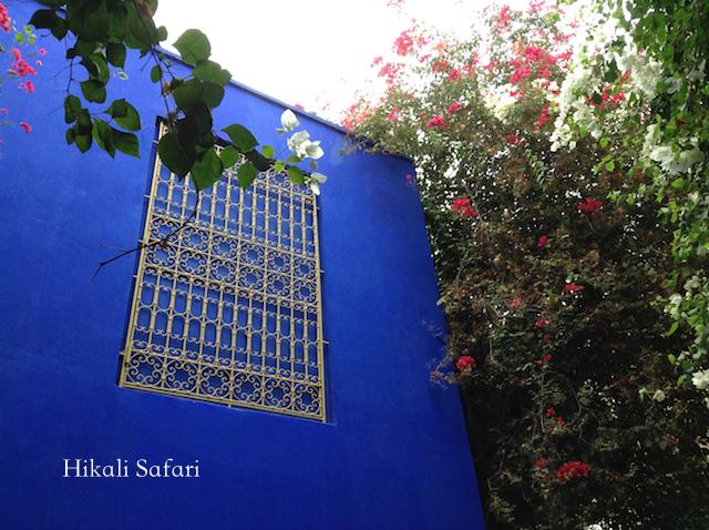 モロッコ、マラケシュのマジョレル庭園
