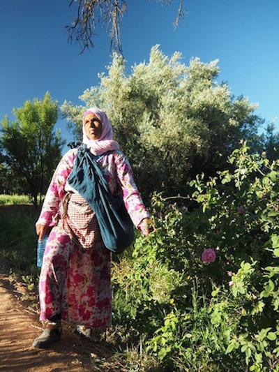 モロッコ、バラの谷